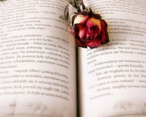 Cele mai bune 10 romane de dragoste din toate timpurile